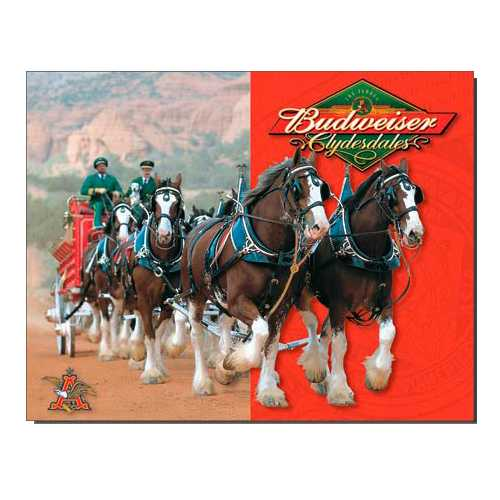 Budweiser-Clydesdale-Horses-Tin-Sign-1281.jpg