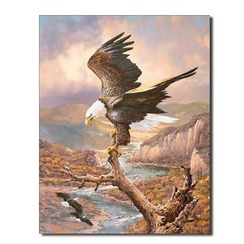 Eagle-Print-Tin-Sign-1029.jpg